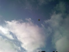 Hata Fighter Kite