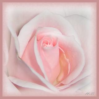 Liebe Mittwochsgrüße ..... for a wonderful day