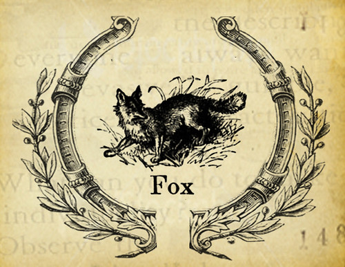 you are a fox postcard