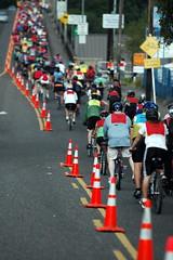 Bridge Pedal 2007-16