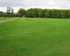 Picture of Jesus Green