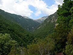 Crêtes d'Usciolu au-dessus de la vallée de l'Arinella