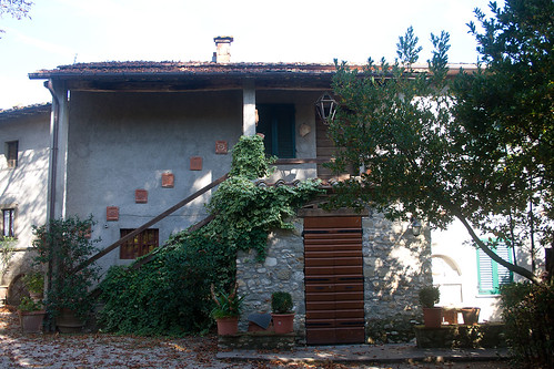 Ravagni wine and olive oil shop