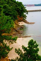 Odo Park Shore (pokoroto) Tags: park autumn japan october shore  fukuoka odo kyushu 2010  10     kannazuki 22  themonthwhentherearenogods