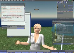 Teaching in Second Life can be confusing