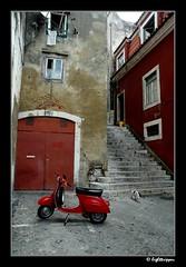 RedVespaAndCat (lighttripper) Tags: street portugal europe lisboa lisbon alfama bpcprofile