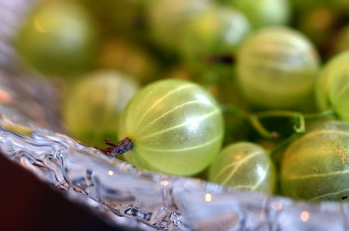 gooseberries, and some questions