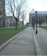 College </p> <p>Green