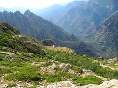 Les bergeries ruinées de Scaffone