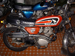 PICT5277