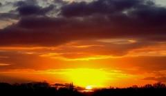 Sunset in Vorden the Netherlands (rob.schmitz) Tags: sunset sun nature clouds zonsondergang colours natuur wolken zon kleuren