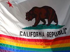 California flag (SwedeInSF) Tags: sanfrancisco gay leather fetish lesbian folsom lgbt queer folsomstreetfair leathermen folsomstreetfair2007 upcoming:event=221936