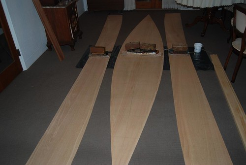 "Cutting out the panels for the plywood quick canoe.  Note the use of ""gravity clamps for the buttstraps"