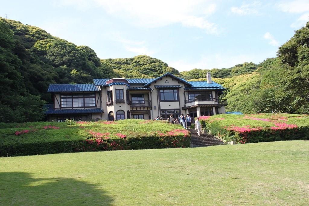 A Japan photo No.163:Hydrangea Walk(AJISAI) in Kamakura