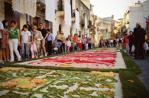 Infiorata [more inside]