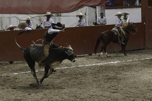 vaqueros-3