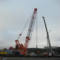 Flood control crane