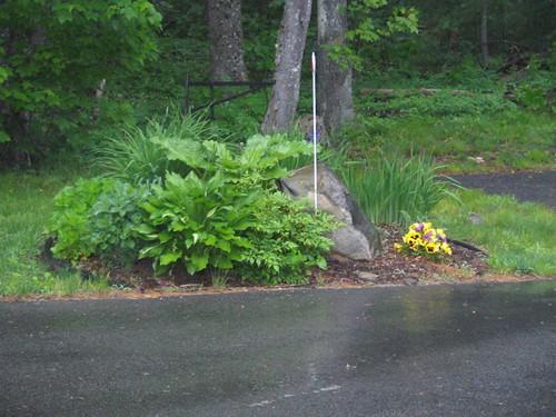 Mini garden in the driveway