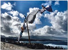 Porque hoje  sbado... (Azorina) Tags: blue portugal azul poetry poem wind womenonly laundry poesia vento azores roupa poema smiguel azorina rabodepeixe flickrsbest edwardbond