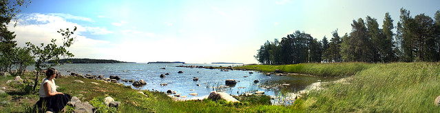 A summer panorama