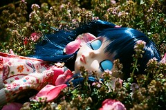 Tess asleep (Descending Angel) Tags: summer doll petal blythe neo tess asleep abe custom rosepetals takara encore 30faves asianbutterflyencore 10faves 20faves 40faves