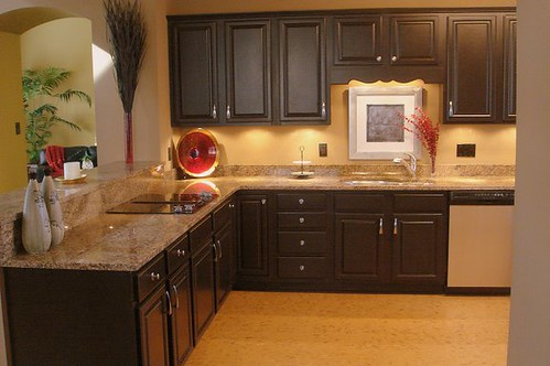 Kitchen Makeover with Black Cabinets by champagne.chic.
