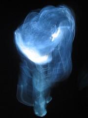 The JEllyman (nEmoGruppo) Tags: man architecture florence university artist performance jelly fried luminex rosenstock