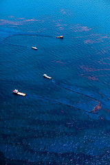 20100618-tedx-oil-spill-1421