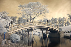 Toy Bridge (night86mare) Tags: ir infrared r72 k100d japanesegardens jurongeast bridge water reflections tree surreal impressedbeauty singapore flickrslegend