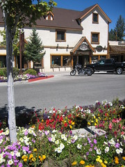 Hogs and Flowers in Big Bear, California