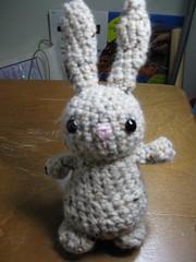 Bunny for Alyssa