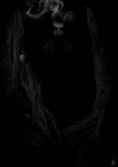 Forest Spirit II (Romain Donato) Tags: portrait tree forest dark noir spirit ghost sombre arbre blanc romain fort fantme esprit donato racines rd2010