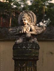 Garuda - Dinajpur Rajbari (AЯίF | Md. Arifur Rahman) Tags: old light sculpture history saint stone canon religious wings king eagle goddess ruin architect historical hindu bangladesh myth garuda dinajpur mythological rajbari archiological dinajpurrajbari jomidar
