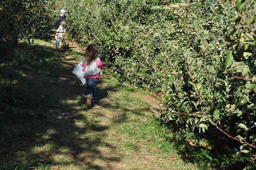 running through the orchard