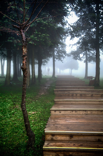 HDR Fairy Mountain, Chongqing