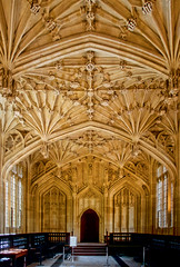 UK - Oxford - Bodleian - Divinity School vaulting (Darrell Godliman) Tags: uk greatbritain travel england copyright tourism europe university britishisles unitedkingdom britain eu oxford gb oxforduniversity oxfordshire allrightsreserved bodleian oxon bodleianlibrary vaulting divinityschool universityofoxford travelphotography perspectivecorrected instantfave omot  travelphotographer flickrelite dgphotos darrellgodliman wwwdgphotoscouk dgodliman ukoxfordbodleiandivinityschoolvaulting
