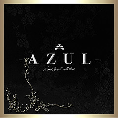 The Art of MOTION Sponsor _ AZUL