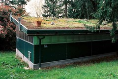 Green Roof Workshop