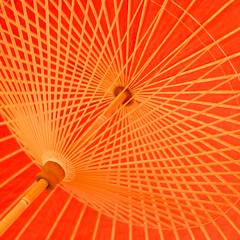 Oiran's umbrella