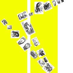 btrap-row.jpg