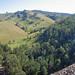 View from Glennies Creek Dam_8474