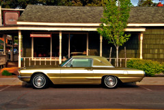 2007_05180075a (Curtis Gregory Perry) Tags: auto ford car automobile mobil motor automvil fomoco xe automobil     samochd  kotse  otomobil   hi   bifrei  automobili   gluaisten