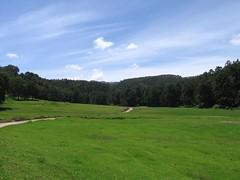 Munnar  13 Aug 2007 025 (vikramjitsingh.ips) Tags: india mountains nature golf tea kerala westernghats ips munnar teaestates hiils idukki highrange kundala tatatea wesyernghats