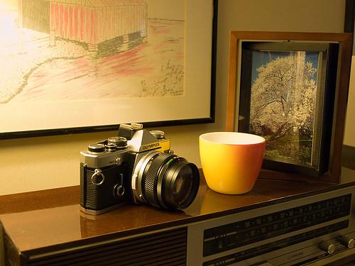 Olympus OM-2n w/ OM 50mm f/1.4 lens