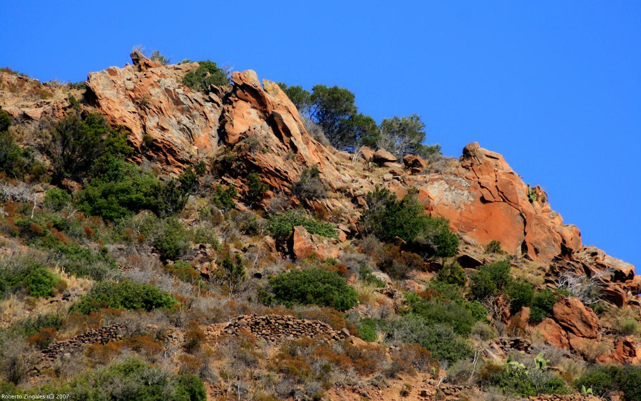 1285548203 ae489b8fd7 o Interessante Nature Wallpaper imagem para seu  windows Nature Wallpaper photos