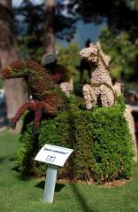 Merano: sculture realizzate con dei fiori