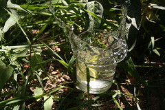 The open hands of water!!! (matiya firoozfar) Tags: water speed canon high lemon splash eos400d matiya lemonsplash matiyafiroozfar ماتیا فیروزفر firoozfar ماتیافیروزفر 400ِd alieَ