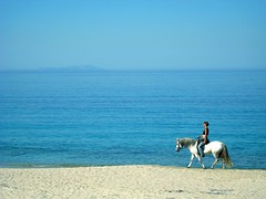 Feeling Nature As a Part of You (pallettina) Tags: sea horse beach bravo ride turquoise greece naxos plakabeach magicdonkey diamondclassphotographer flickrdiamond theperfectphotographer nginationalgeographicbyitalianpeople feelingnatureasapartofyou