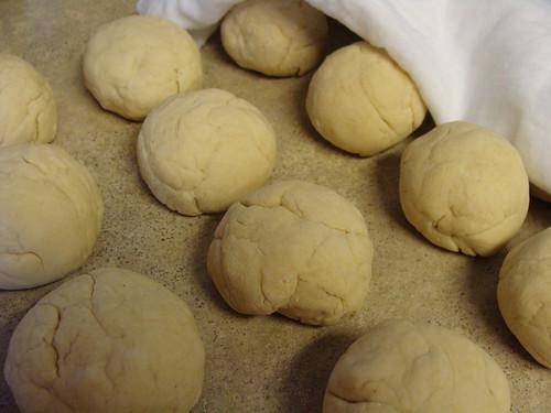resting tortilla dough balls (DSC03100)