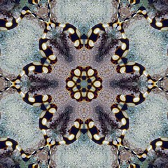 Look Through My Kaleidoscope